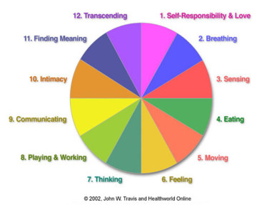 A pie chart showing all the aspects of wellness